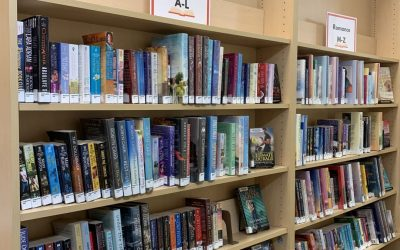 Lake Elmo Library – A Valuable Community Resource